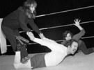 Nakonec se dostalo i na wrestling se ženami. V komedii Teaneck Tanzi: The Venus