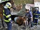 Dvě jednotky hasičů pomáhaly v Tučapech na Olomoucku koni, který se propadl do...
