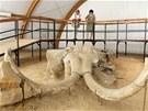 Návštěvníci si prohlížejí již odkrytou mamutí kostru (27. června 2012)