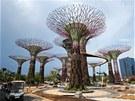Sou�ástí zahrady je chodník v korunách strom�, který nabízí náv�t�vník�m krásné...
