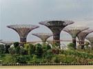 Zahrady dostaly název Supertrees (Super stromy) a stojí ve �tvrti Bay v hlavním...