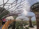 V Singapuru postavili nové visuté zahrady Semiramidiny. Osmnáct gigantických...