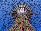 Netradi�ní vzhled strom� byl inspirován japonským animovaným filmem Princezna...