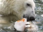 Chladit se v bazénu a ještě u toho lízat zmrzlinu, kdo by odolal...