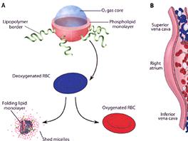 A: Podoba lipidové částice obsahující kyslík, která má bezpečně dodávat kyslík