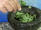 Do hmoždíře natrhejte snítky čerstvé bazalky.