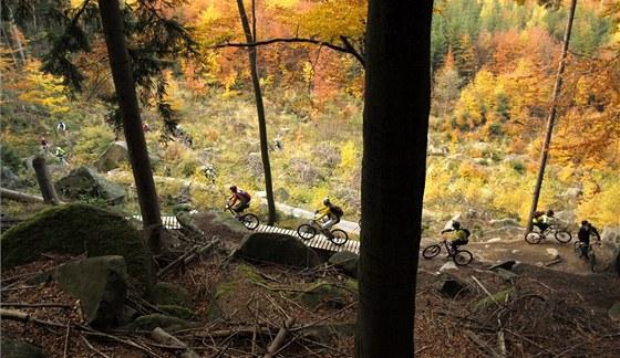 Traily pod Sokolím vrchem