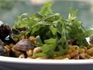 Passatelli s plody moře a rukolou podle šéfkuchaře Emanuella Ridiho