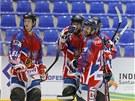 Momentka ze semifinále mistrovství světa inline hokejistů Česko - USA
