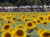 SLUNE�NICE. Cyklisté b�hem t�inácté etapy Tour de France