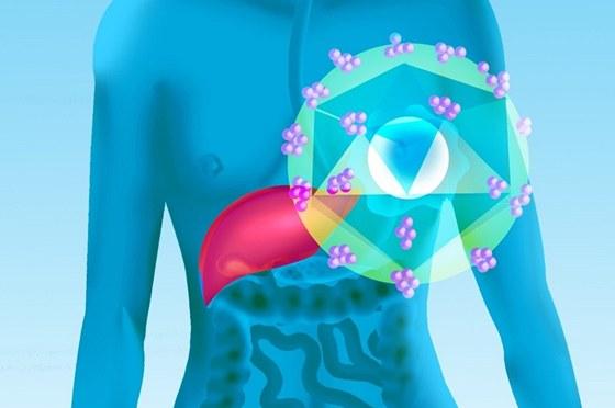 Proti hepatitidě typu A a B se můžete nechat očkovat (ilustrační snímek)