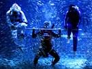 Oslavy olympiády. V rámci oslav olympijských her v Londýn� bylo v akváriu v...