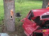 Mladá žena zemřela na Písecku po nárazu do stromu.