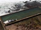 Deset metr� dlouhou mrtvou velrybu vyhodilo mo�e v noci na st�edu do plaveckého...