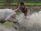 PRO VÍT�ZSTVÍ COKOLIV. Ú�astník bý�ích závod� v Kalkat� kou�e do ocasu jednoho...