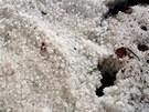 Poz�statky sobotn� odpoledn� bou�e s krupobit�m byly v Chel�ic�ch na