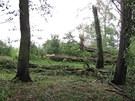 Lidé v Bavorově tvrdí, že se obcí prohnalo tornádo. V silném větru padaly