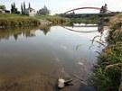 U mostu, po němž ve čtvrti Nemilany na jihu Olomouce vede železniční trať do