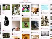 Kategorie: Zvířátka (Pinterest.com)