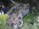 Tragická nehoda u Dolních Studének.