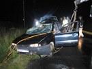 Tragick� nehoda u Doln�ch Stud�nek.