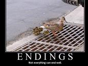 Demotivační plakáty nám připomínají, že ne všechno může mít dobrý konec