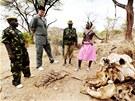 Jao Ming se dívá na kostru slona, kterého ulovili pytláci v pohoří Matthews.