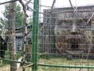 Jeden z pavilonů opic v Zoo Chleby
