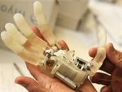 Základ pro bionickou ruku kontrolovanou mozkem (SSSA)