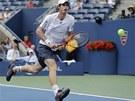 KAM LETÍŠ? Andy Murray sleduje míček v semifinále US Open proti Tomáši