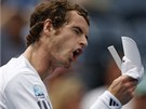 ROZLAD�N� ANDY. Brit Andy Murray se zlob� v semifin�le US Open proti Tom�i
