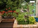 V letn� kuchyni jsou �erstv� bylinky kdykoliv p�kn� po ruce.
