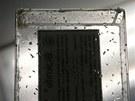 Červy se uchovávají ve skleněné dóze.