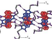 Schématická podoba nového feroelektrického materiálu. Modré molekuly jsou...