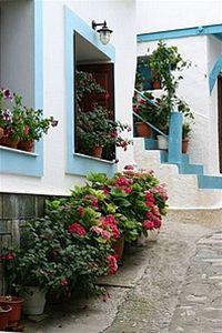 Řecký ostrov Samos: Dovolená s chutí vatikánského vína