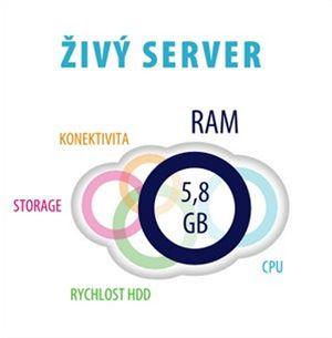 živý server