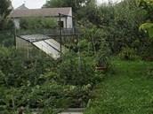 U�itkov� ��st zahrady dokazuje, �e Dana Hanu�ov� je i zdatn� p�stitelka ovoce a
