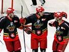 Královéhradečtí hokejisté se radují z gólu.