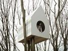 Domek tak nabízí příjemné soužití jednoho pozorovatele a skupinky ptáků.