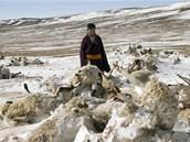 Dobytek je ústředním bodem života mongolských pastevců. Když o něj přijdou, nezůstane jim vůbec nic.