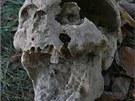 V Majetíně na Olomoucku odkryli archeologové u božích muk hroby vojáků zřejmě z...