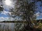 Rybník Žofinka