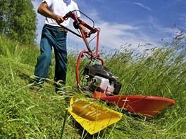 Bubnová sekačka je ideální pro malozemědělce, který trávu využije pro krmení