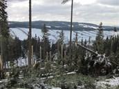 Víkendové sněžení a silný vítr vyvracely a lámaly stromy v Krkonoších. (28. 10.