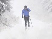Do lesů v Orlických horách se o víkendu vydal první běžkař.