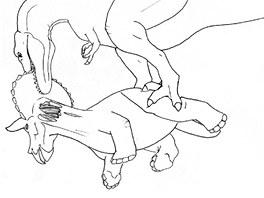 Tah dravce odkryl a potrhal krční svaly.