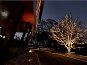 Listnatý strom před hotelem v Kadani ukazuje současný trend vánoční výzdoby.