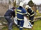 Hasiči v Olomouci zachraňují srnky uvázlé mezi tyčemi kovového hřbitovního