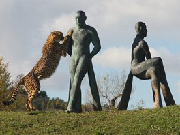 V Zoo Praha stoj� nov� souso�� Pastevci gepard� profesora Michala Gabriela.