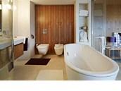 Panely z jilmu doplňuje v koupelně benátský štuk.